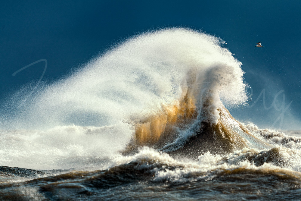Volcanic In Nature Photography Art | Trevor Pottelberg Photography