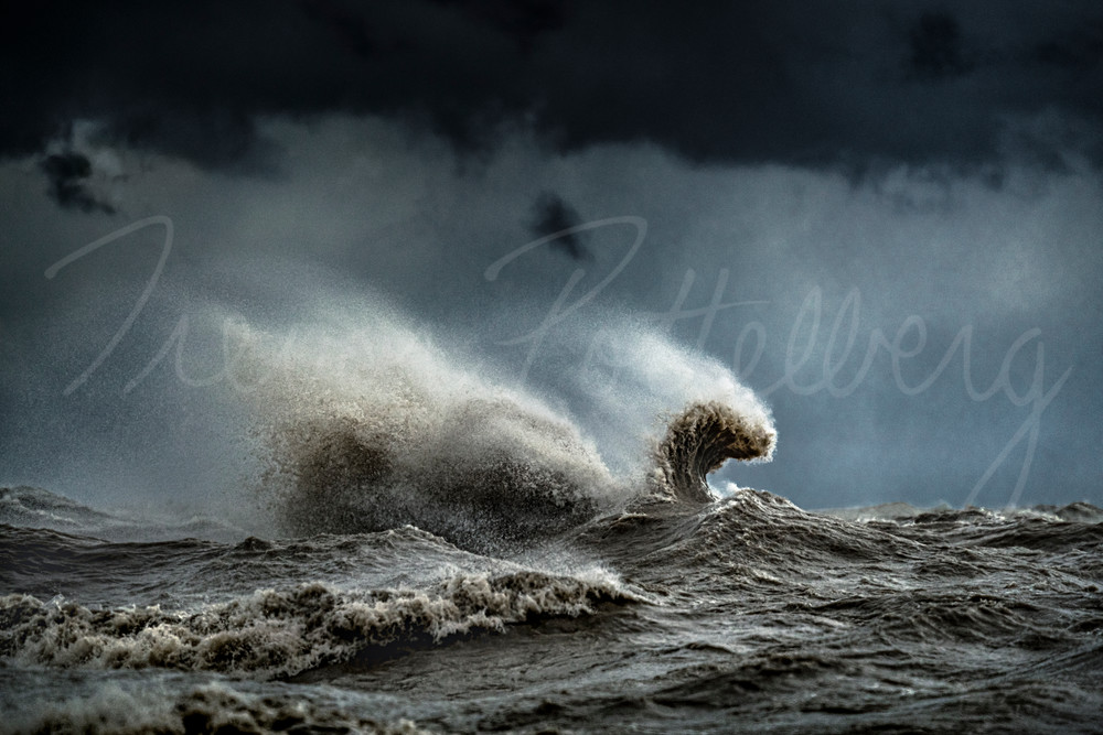 Nessie Photography Art   Trevor Pottelberg Photography