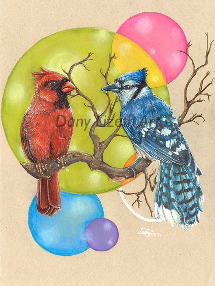 """Cardinal and Bluejay"""