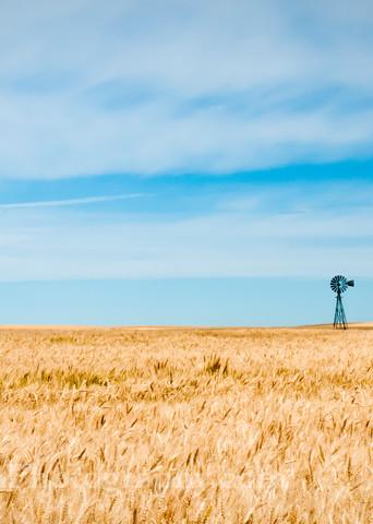 """Windmill and Wheat Panorama "" | Jim Parkin Fine Art Photography"