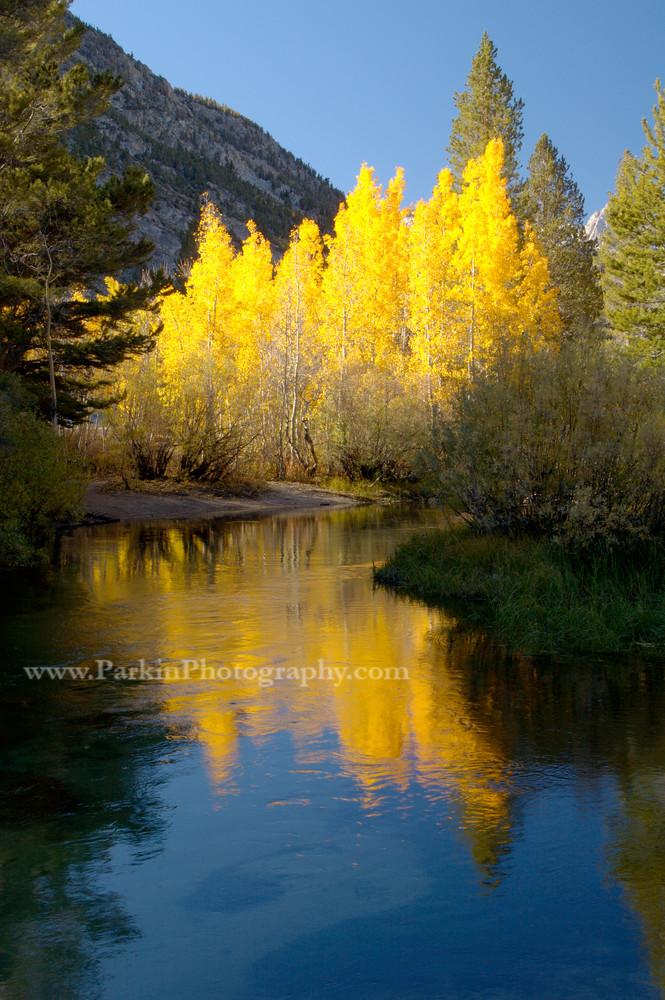 Mountain Stream, Fall Colors