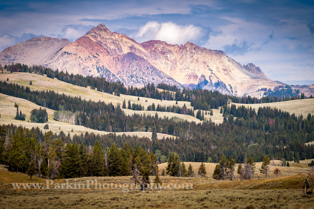 Mountain Landscape, Yellowstone