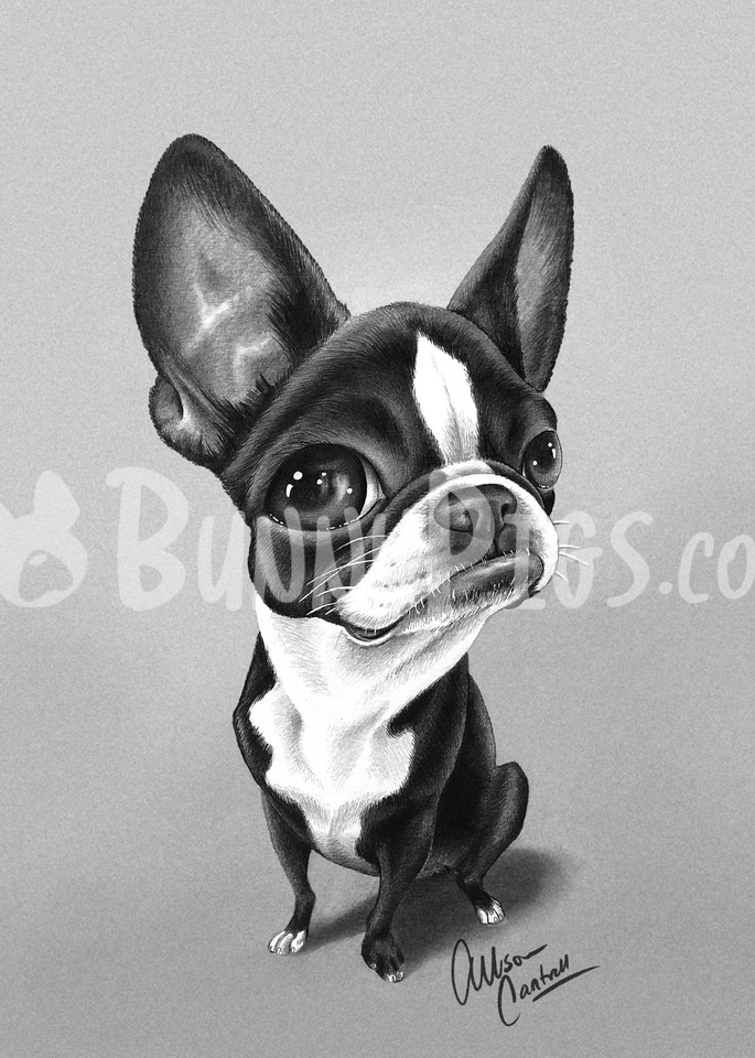 Sophie Mae Art | BunnyPigs