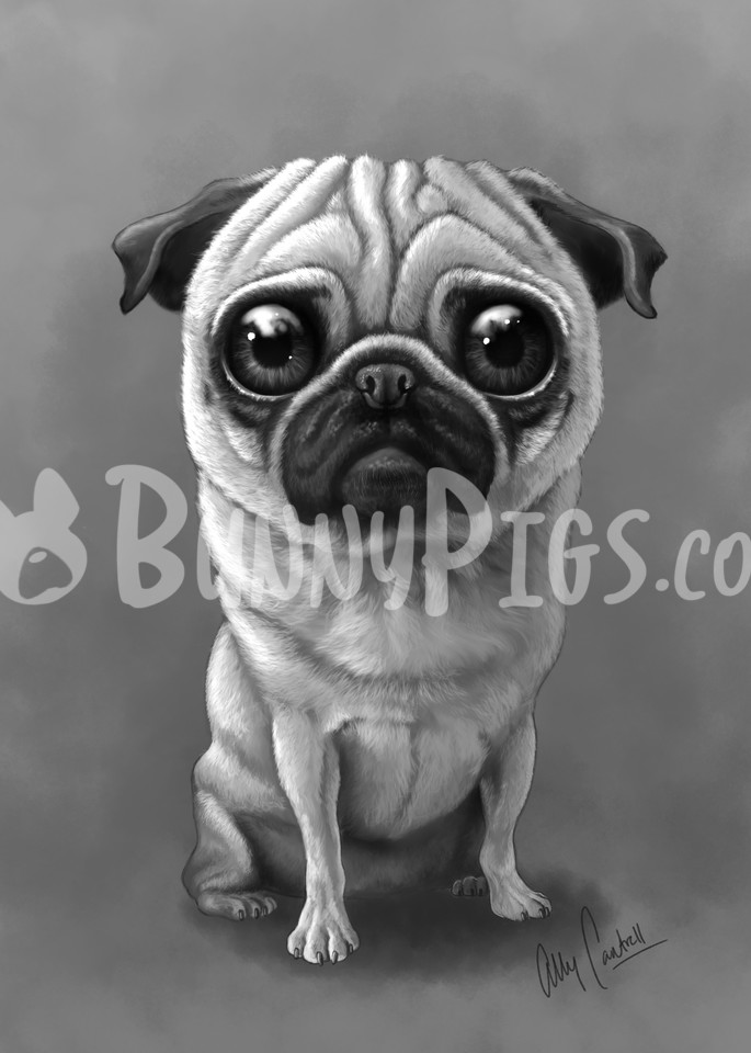 Lilly The Pug Art | BunnyPigs