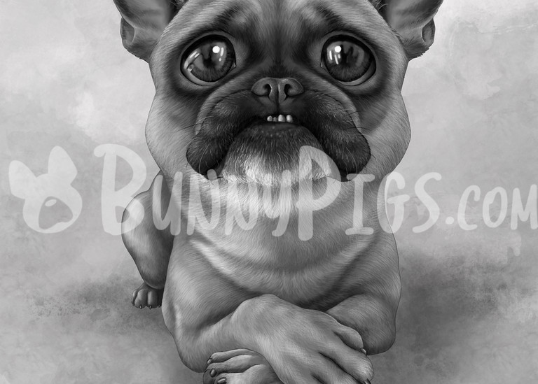 Bruce The Frenchie Art   BunnyPigs