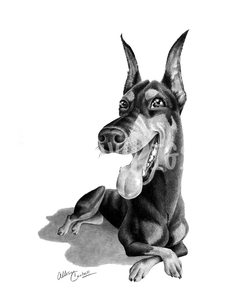 Dobie Smiles Art | BunnyPigs