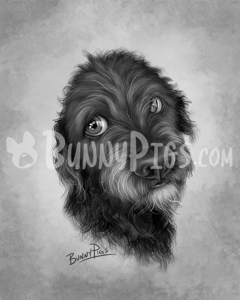 Roxy Art | BunnyPigs