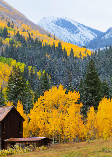 Mountain Light Images, Ashcroft Colorado Fall colors peak cabin mining trees aspen snow