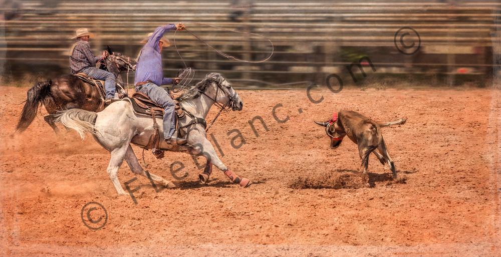 Rodeo Ranch Roundup Branding Decor|Wall Decor fleblanc