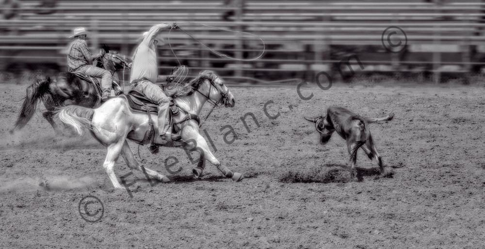 Rodeo Team Roping West Monochrome|Wall Decor fleblanc