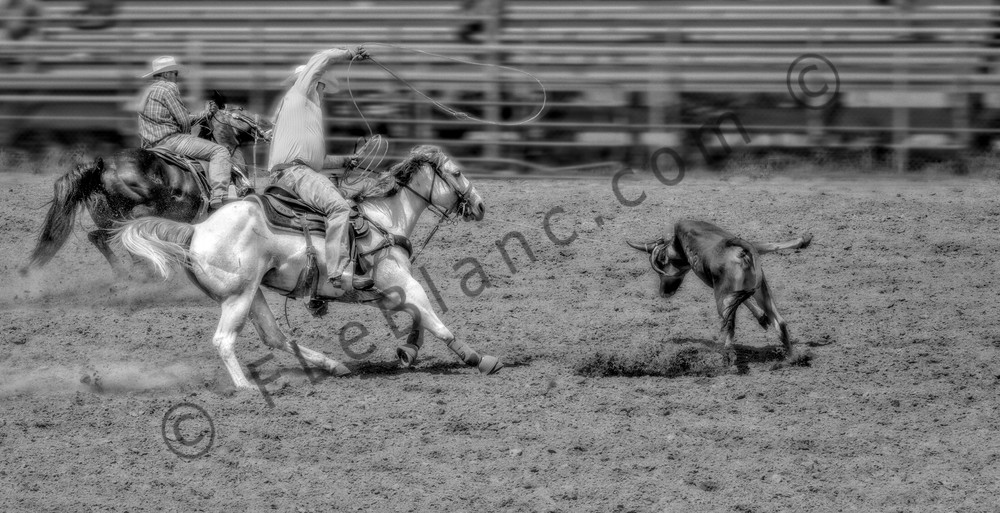 Rodeo Team Cowboys Roping Steer Decor Wall Decor fleblanc