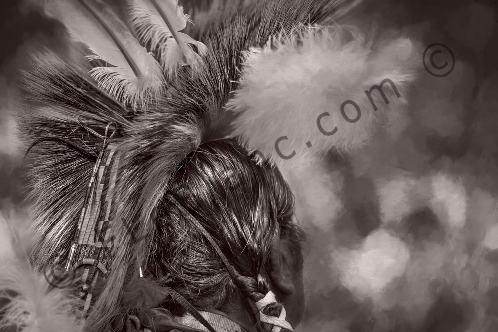 Native American Headdress Monochrome Wall Decor fleblanc
