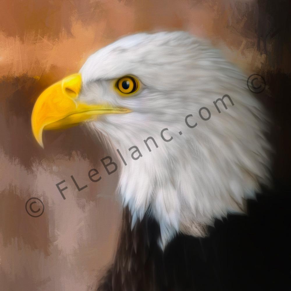 Bald Eagle Predatory Liberty Bird-of-prey|Wall Decor fleblanc