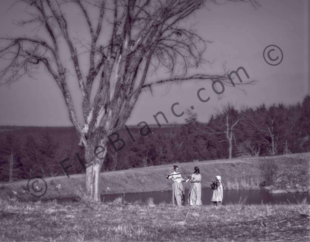 Civil War Reenactment Gathering Wood Realistic Historic fleblanc