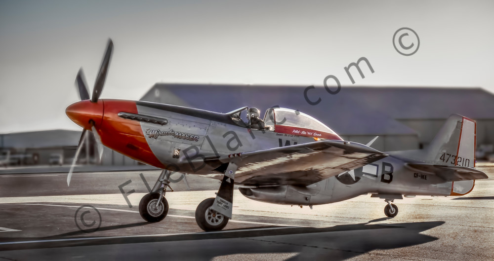 P-51 Mustang Combat Ready WW2 Military Aircraft WWII fleblanc