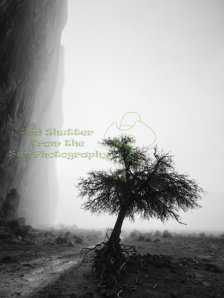 Canyon Solitude Photography Art | Third Shutter from the Sun Photography