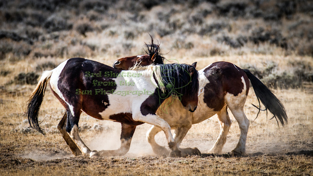 Dual In Wyoming Photography Art | Third Shutter from the Sun Photography