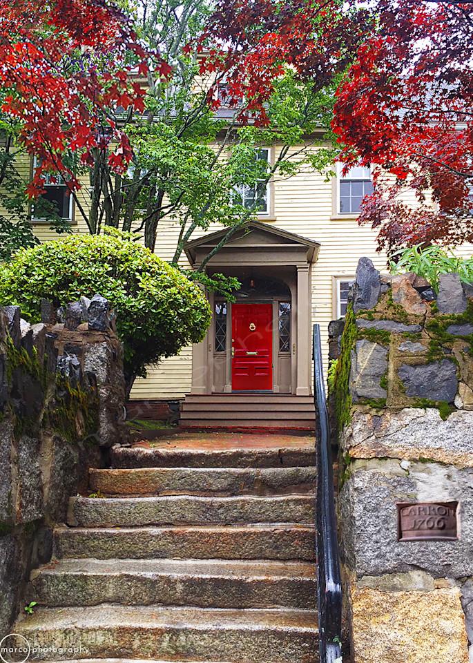 Red Door with Trees