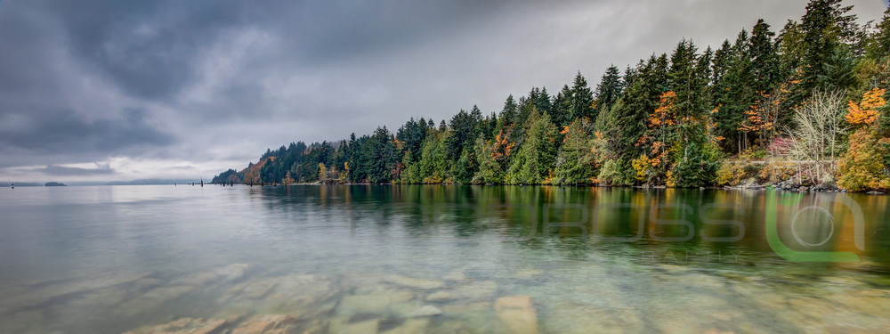 Fall in Mill Bay