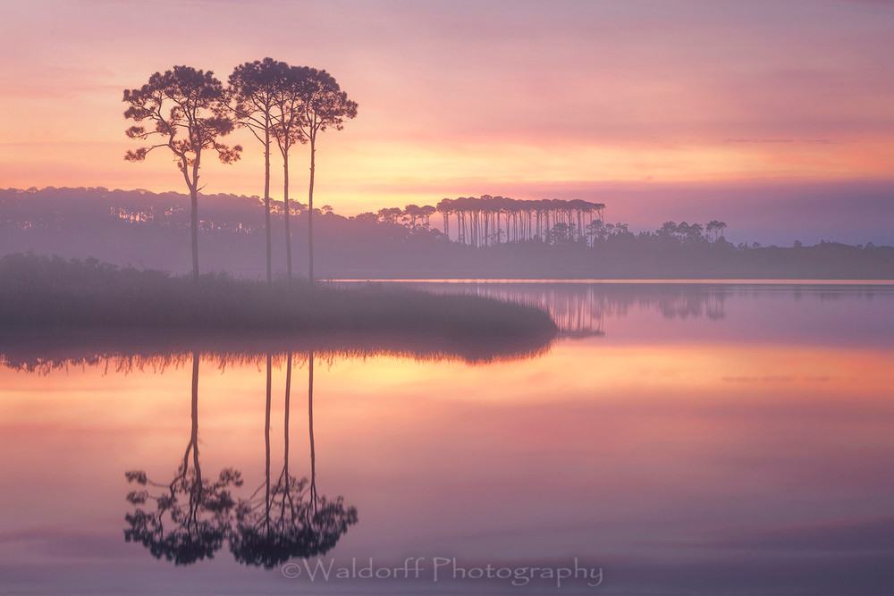 Sunrise over Western Lake at Grayton Beach | 30A | Fine Art Photo on Canvas, Paper, Metal, & More | Waldorff Photography.