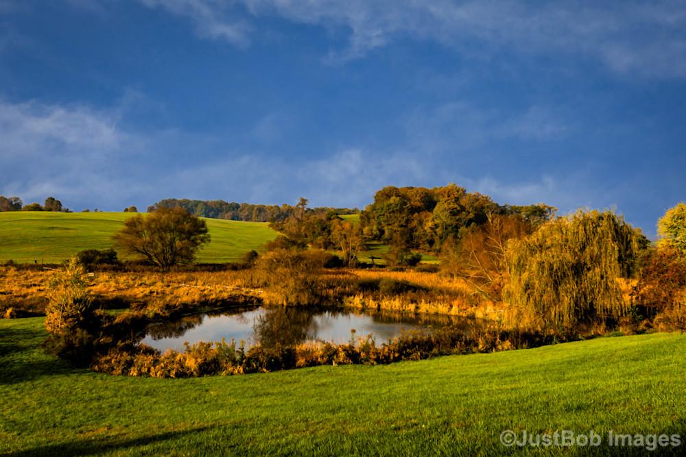 Bright Pond Fine Art Photograph | JustBob Images