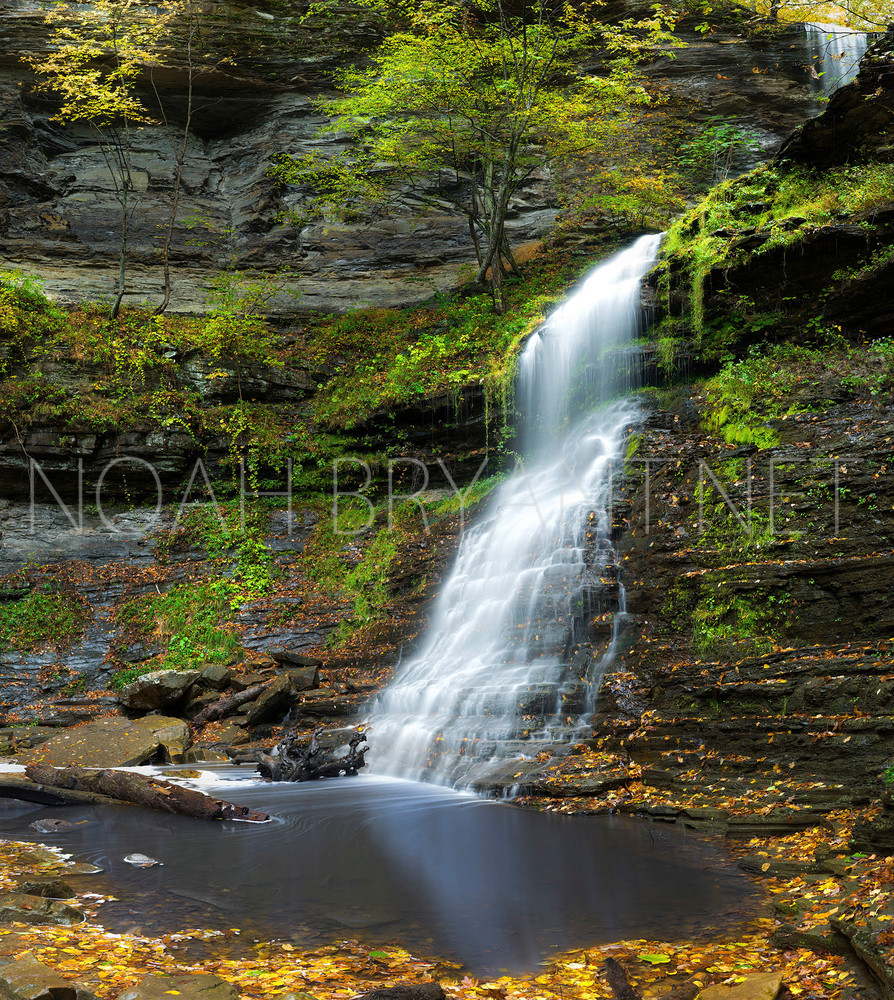 Cathedral Falls by Noah Bryant