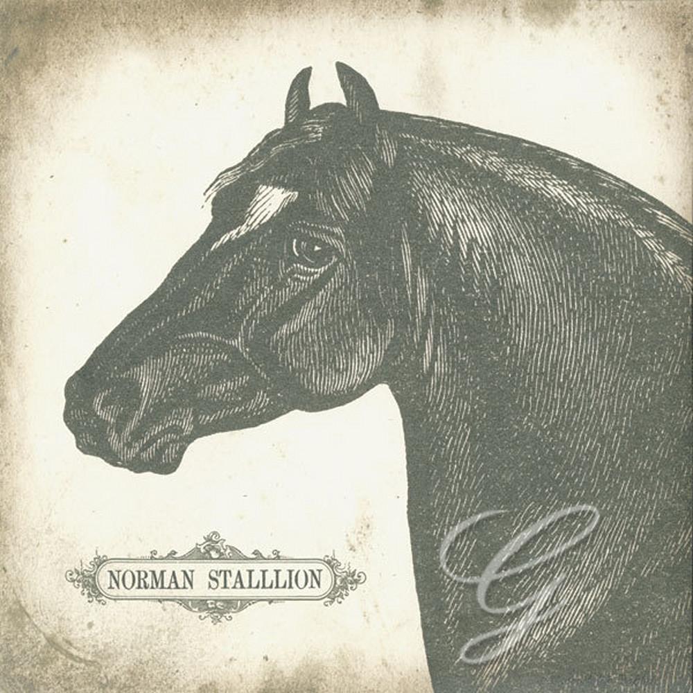 Norman Stallion