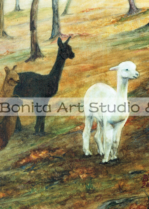 Alpacas Wheres The Dog Art | Blissful Bonita Art Studio & Gallery
