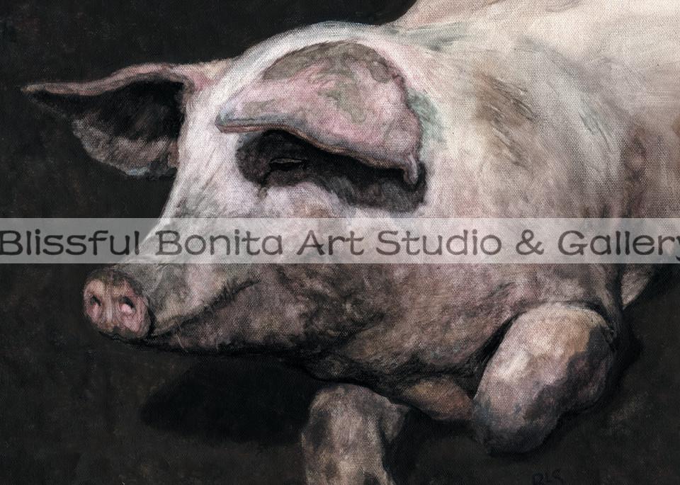 Pig Loving The Mud Art   Blissful Bonita Art Studio & Gallery