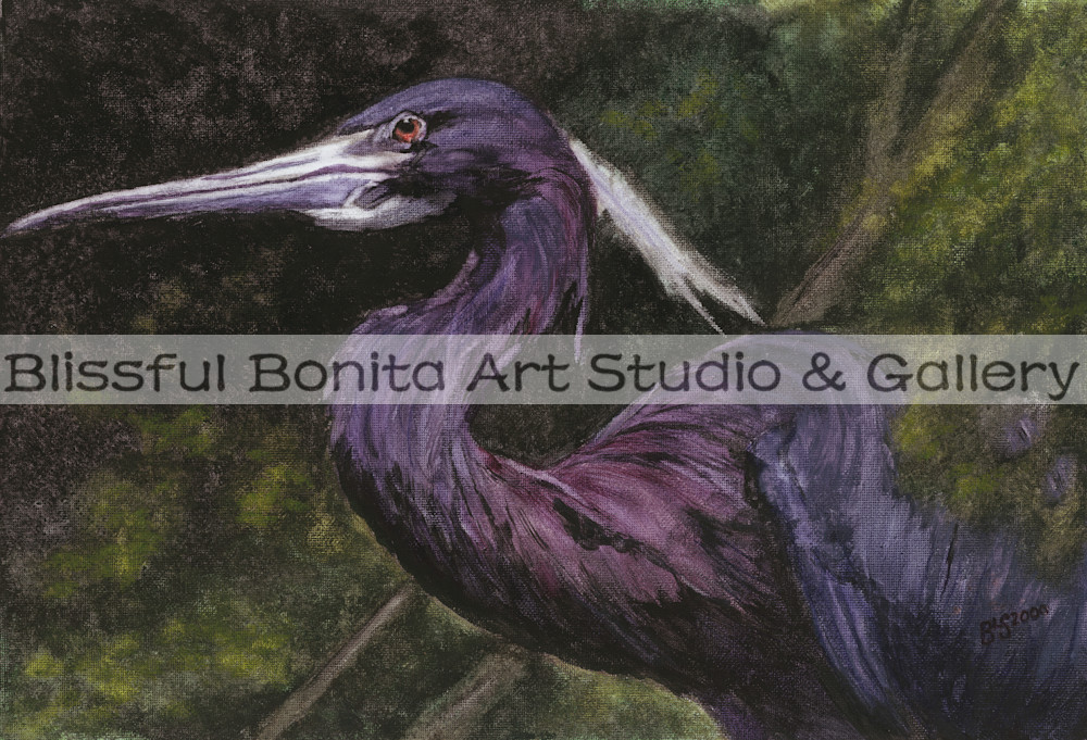 Blue Heron: Emerging Art | Blissful Bonita Art Studio & Gallery