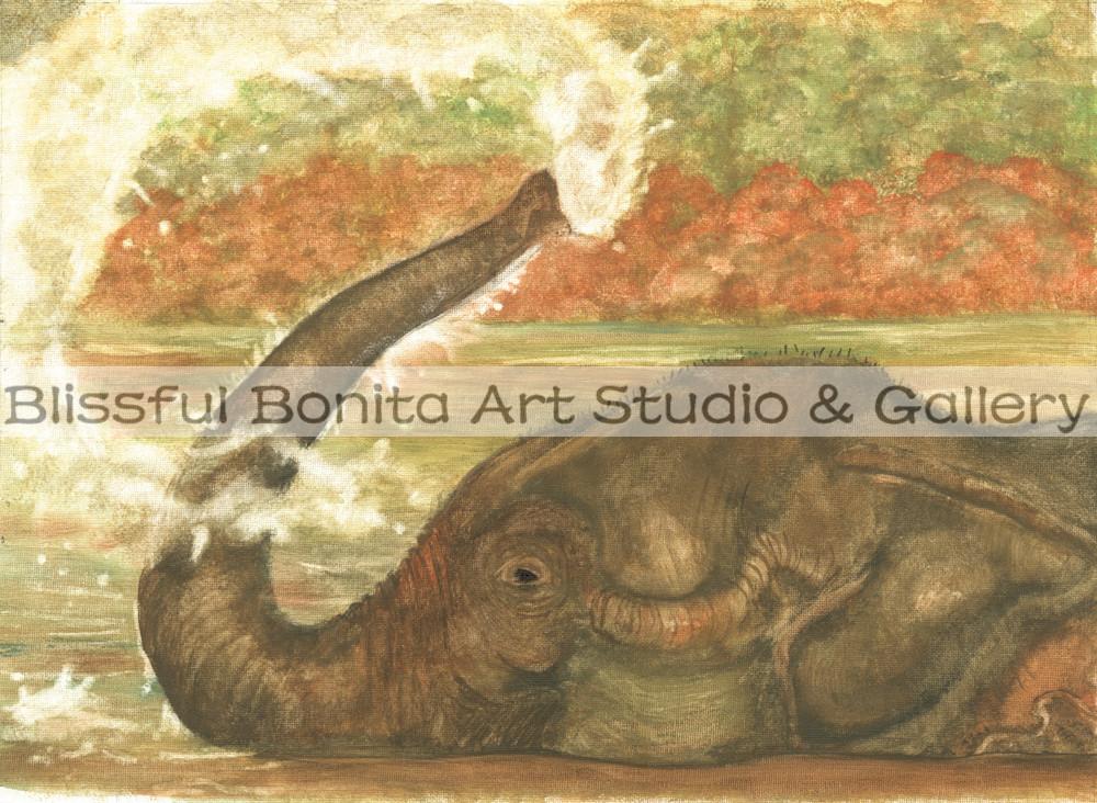Elephant Bath Time