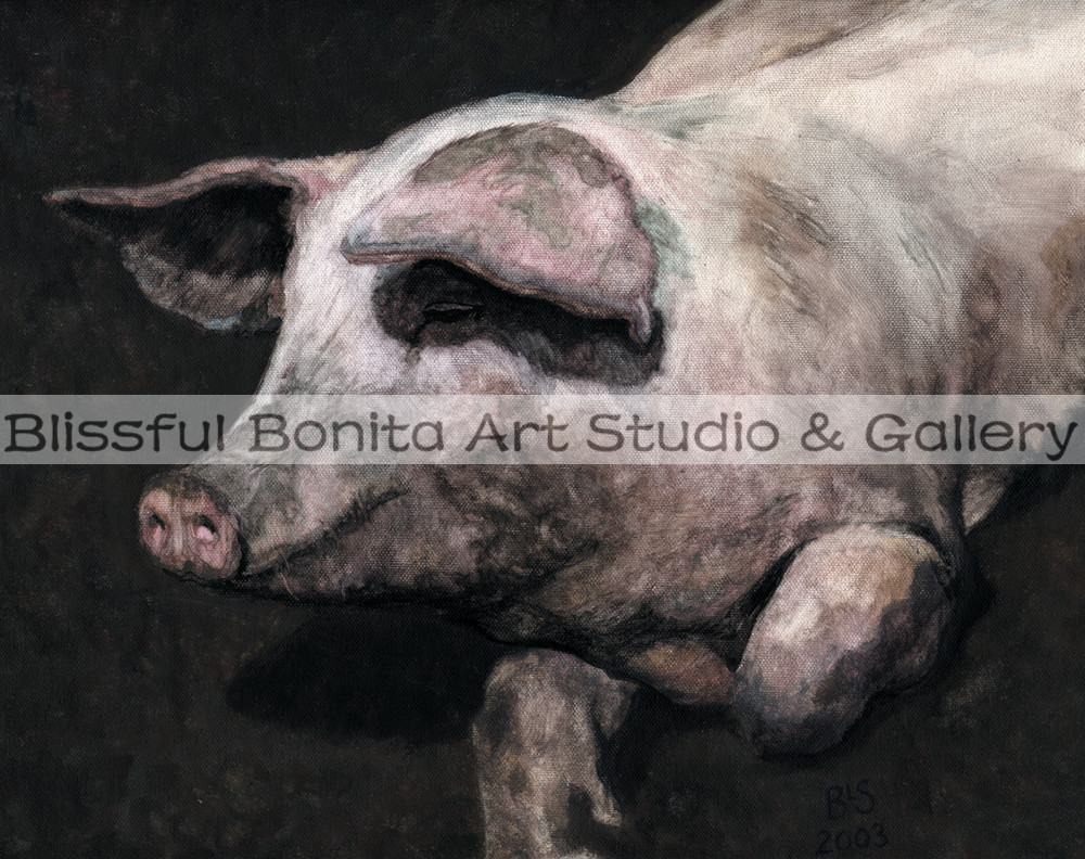 Pig Loving The Mud Art | Blissful Bonita Art Studio & Gallery