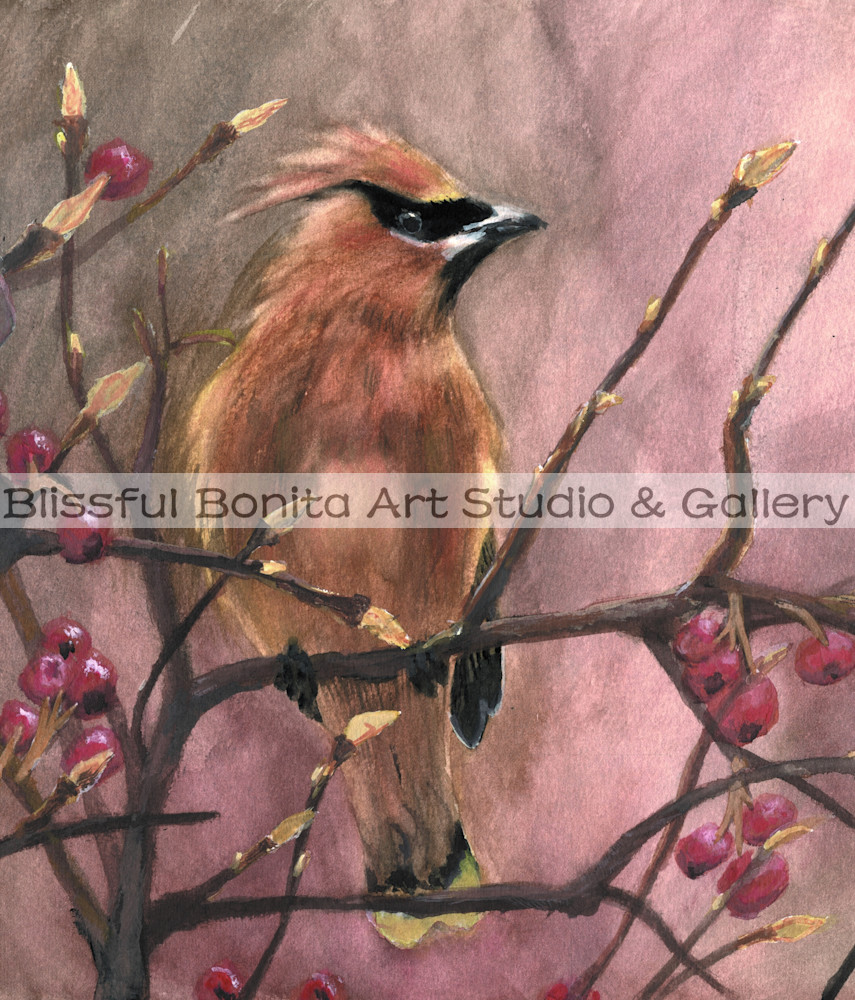 Cedar Waxwing Vertical Art | Blissful Bonita Art Studio & Gallery
