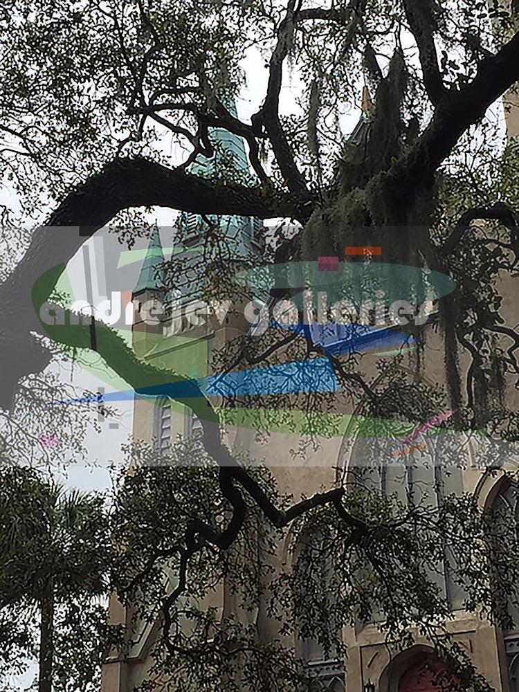 Savannah Church with Mossy Trees