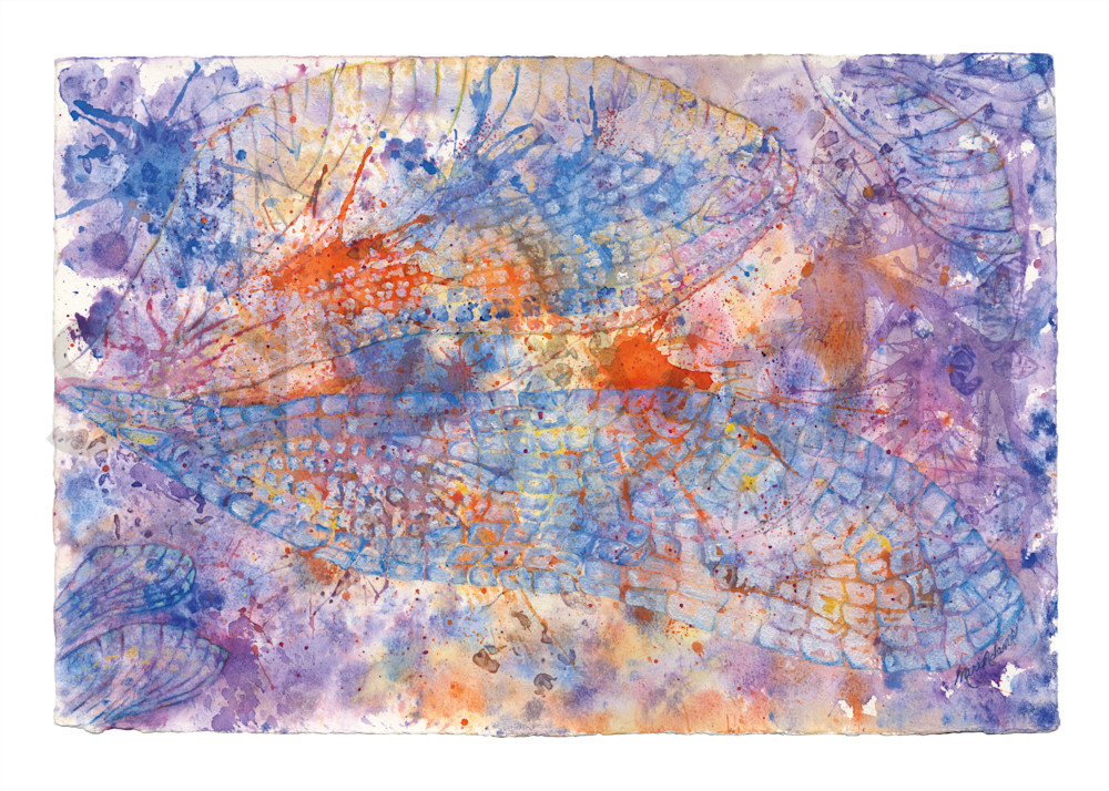 Diaphony by Mari Adams   SavvyArt Market art prints
