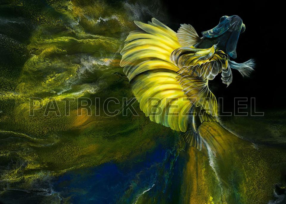 Betta Fish Yellow Blue (Diasec™ Print)  Art | Patrick Bezalel Pte Ltd