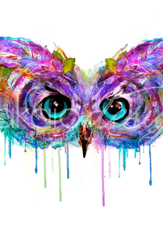 Bright owl painting by Sally Barlow