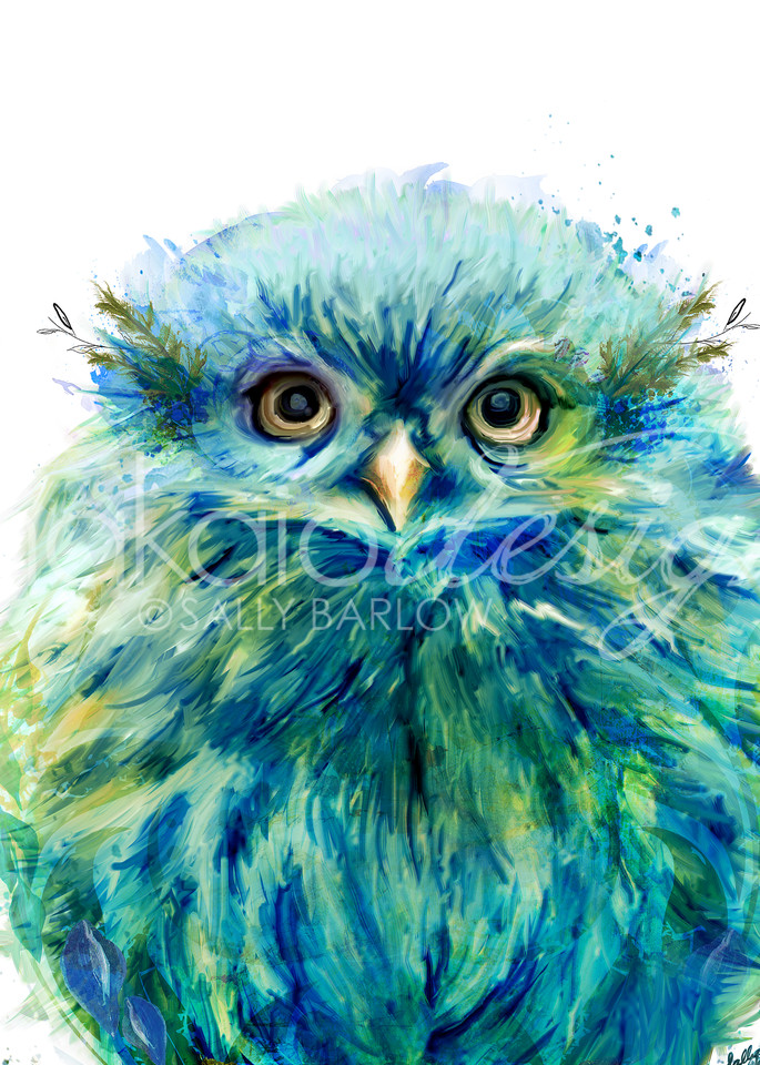 Fiji baby owl art by Sally Barlow