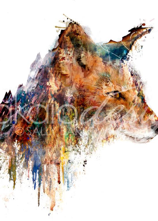 Landscape Fox Art double exposure art by Sally Barlow