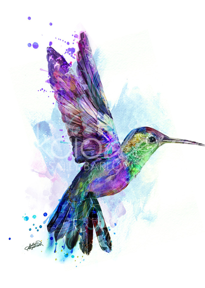 Colorful Hummingbird Painting in Square