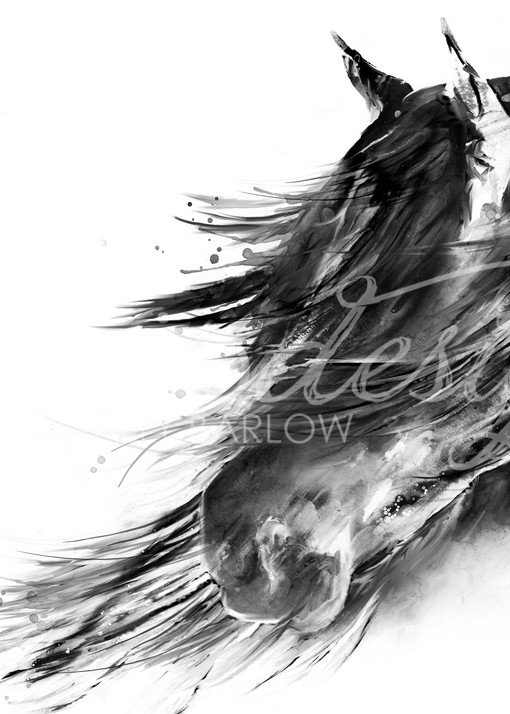 Black and White Abstract Horse Painting