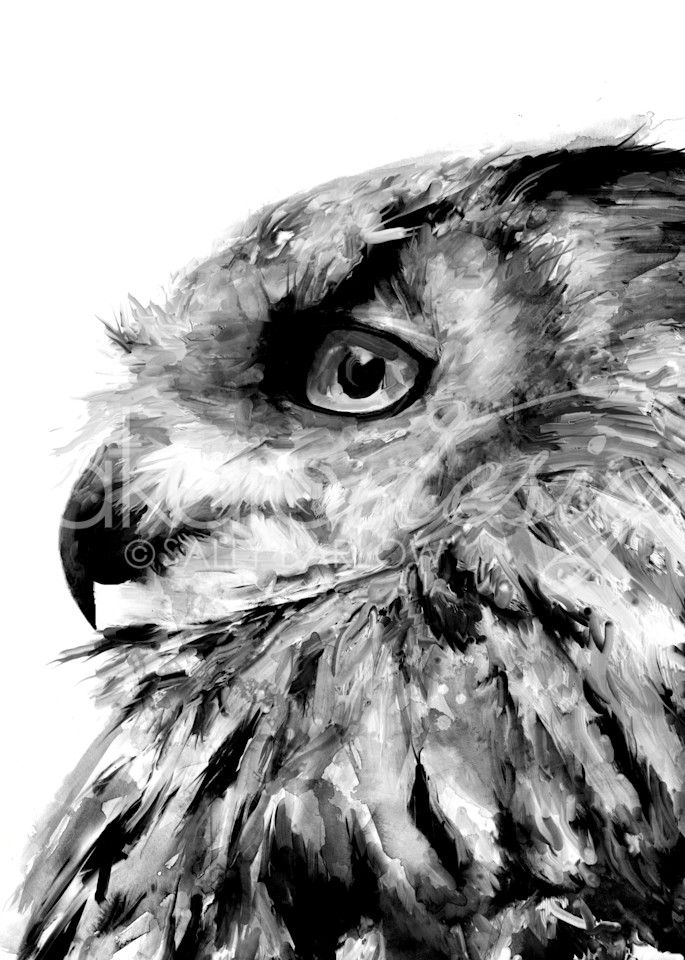 Unique black and white eurasian owl painting by sally barlow