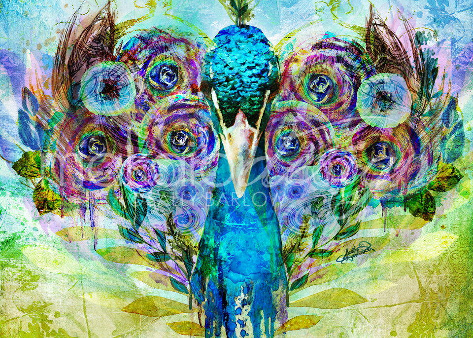Bright and bold peacock mixed media painting art by Sally Barlow