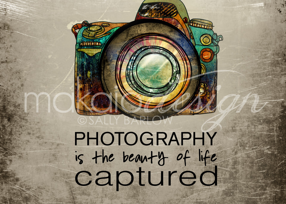 Photography art quote illustration by Sally Barlow