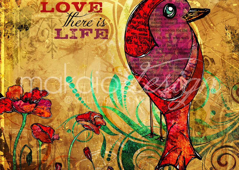 Red Poppies and bird illustration by Sally Barlow