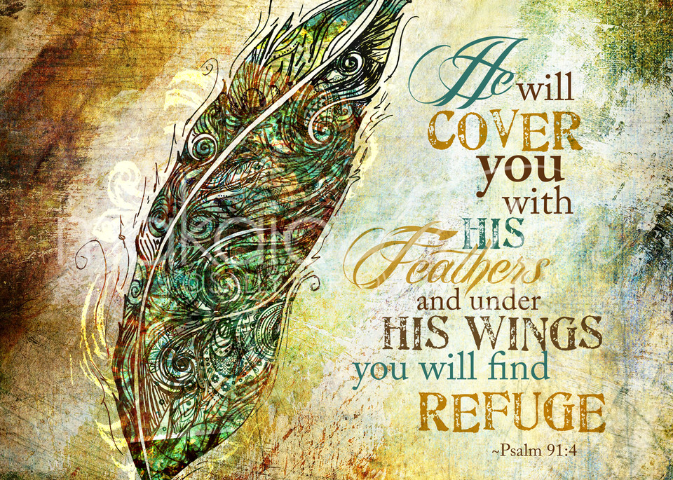 Find Refuge Art | Sally Barlow, Makaio Design