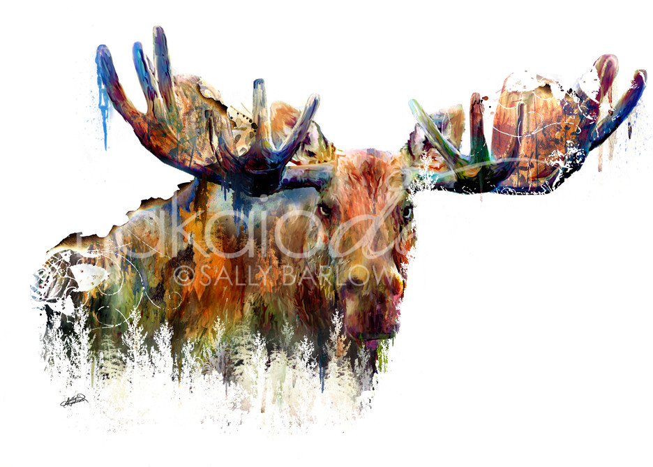 Landscape Moose Art double exposure art by Sally Barlow
