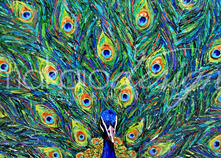 Bright and bold mixed media peacock painting by Sally Barlow