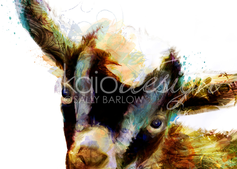 Adorable baby goat art painting by Sally Barlow