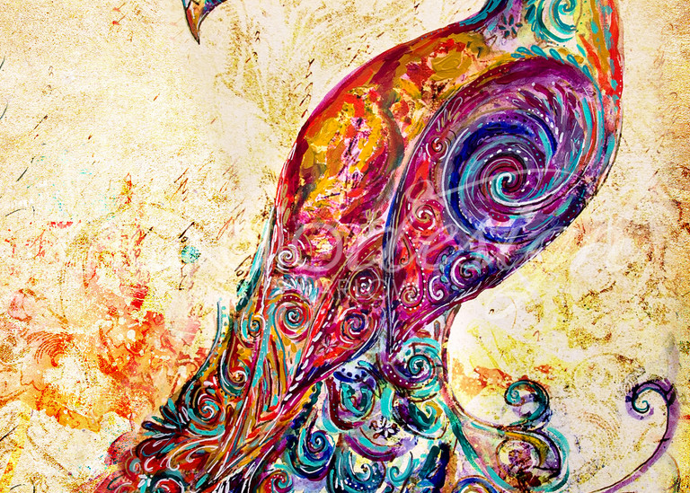 Mixed media colorful peacock art by Sally Barlow